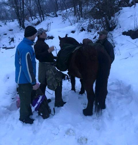 Sa konjima kroz cjelac nosili hranu zavejanom prijatelju